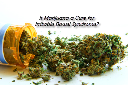 Is Marijuana a cure for IBS